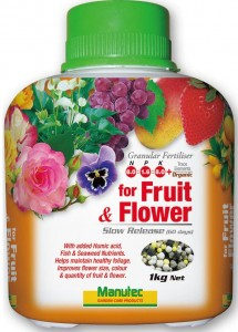 1kg Fruit Flower MTO2246
